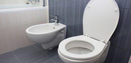Як усунути засмічення в туалеті